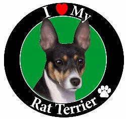 Rat Terrier Decal Magnet