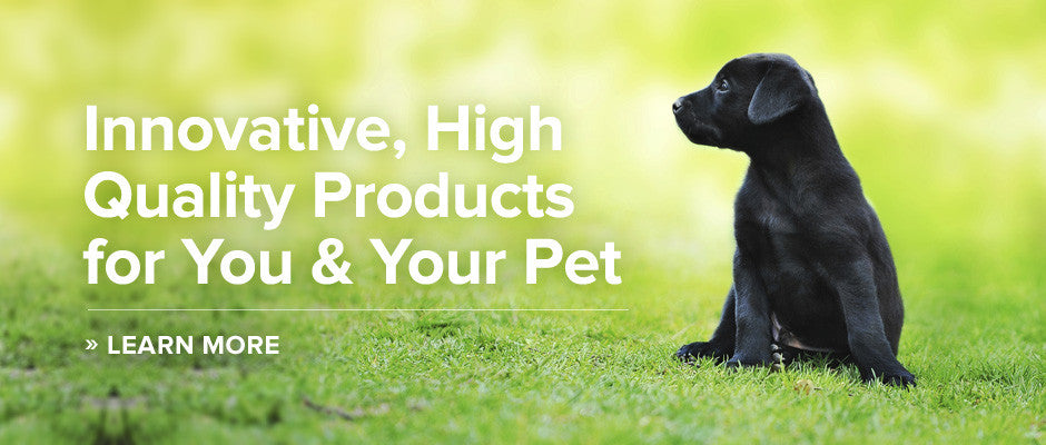 /collections/professional-dog-training-products