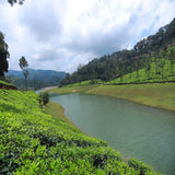 All Kerala Tour 15 Days