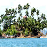 Exotic Andaman 6 Days