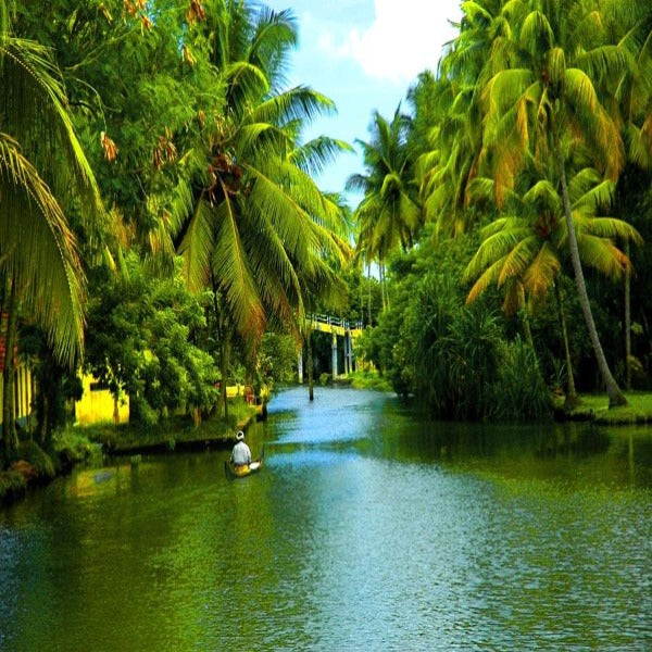Glimse of Kerala Tour 12 Days.