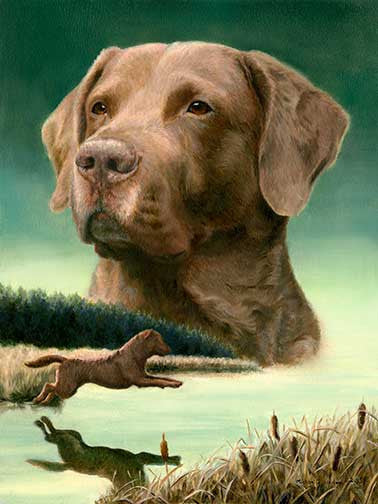 How to paint a Chesapeake Bay Retriever in 10 easy steps.