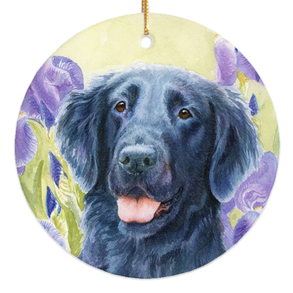 Flat Coated Retriever Art - Michael Steddum