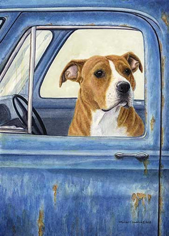 """I'll Watch The Truck"" A Limited Edition American Staffordshire Terrier Print"