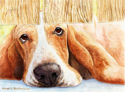 """Basset Watch"" A Limited Edition Basset Hound Print"