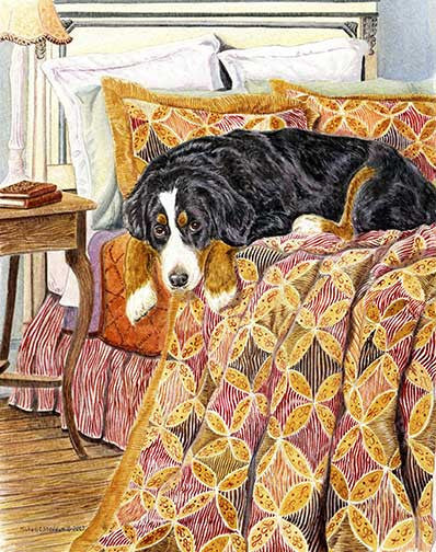 """Bernese Guest Room"" A Limited Edition Bernese Mountain Dog Print"