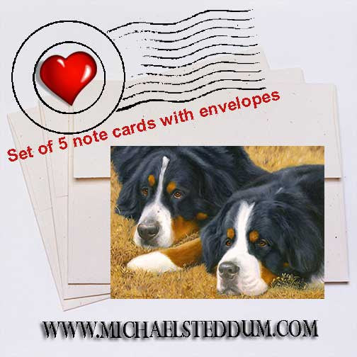 Observers, Bernese Mountain Dog Note Card Set