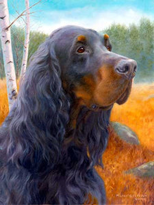 """Blaze of Glory"" A Limited Edition Gordon Setter Print"
