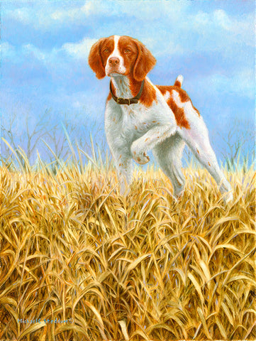 """Classic"" A Limited Edition Brittany Print"