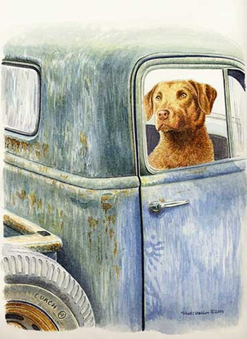 """Be Right Back"" A Limited Edition Chesapeake Bay Retriever Print"