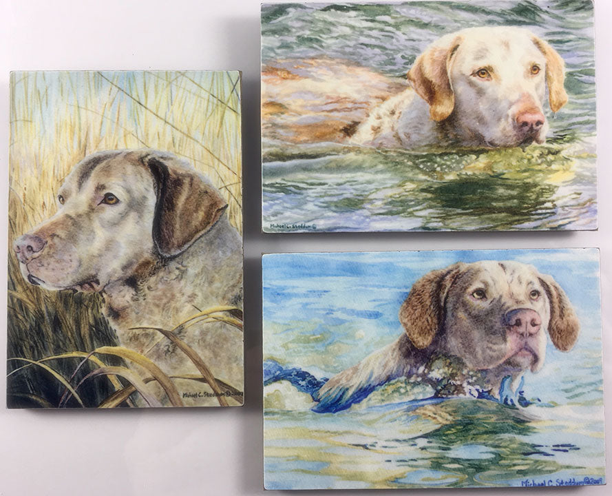 "Chesapeake Bay Retriever ""Deadgrass"" Refrigerator Magnet Set"