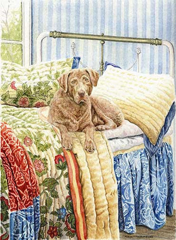 """Chesapeake on the Bed"" A Limited Edition Chesapeake Bay Retriever Print"