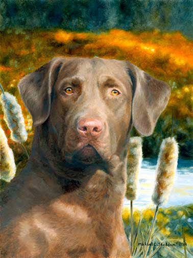 """Ready for the Hunt"" A Limited Edition Chesapeake Bay Retriever Print"