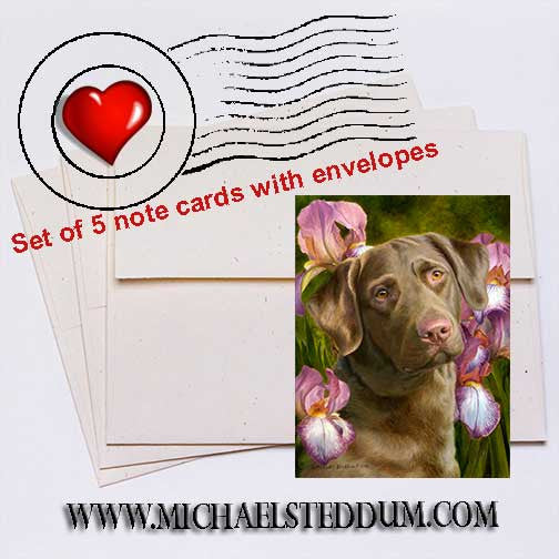 Tribute, Chesapeake Bay Retriever Note Card Set