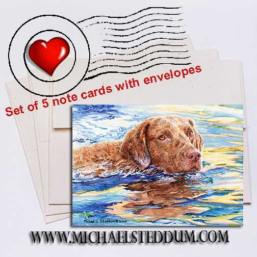 Water Dog, Chesapeake Bay Retriever Note Card Set