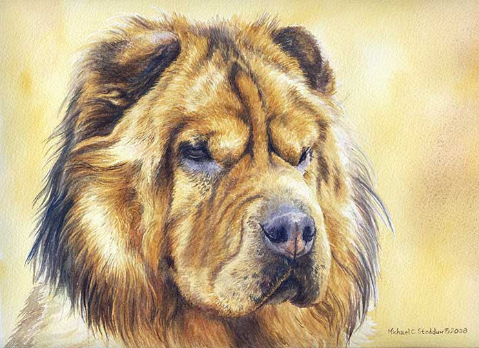"""Chinese Shar-Pei Head Study Print"" A Limited Edition Print"