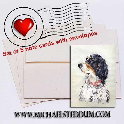 English Setter Head Study Note Card Set