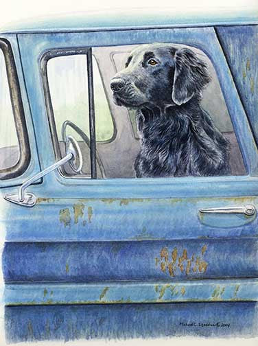 """Wait Here"" A Limited Edition Flat Coated Retriever Print"