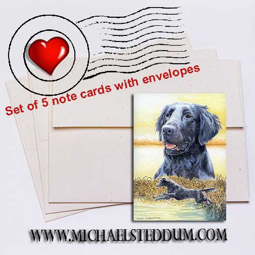 FCR Splash, Flat Coated Retriever Note Card Set