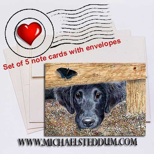 Get It, Flat Coated Retriever Note Card Set
