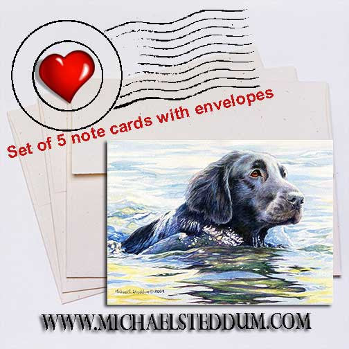 Flat Coat Swim, Flat Coated Retriever Note Card Set