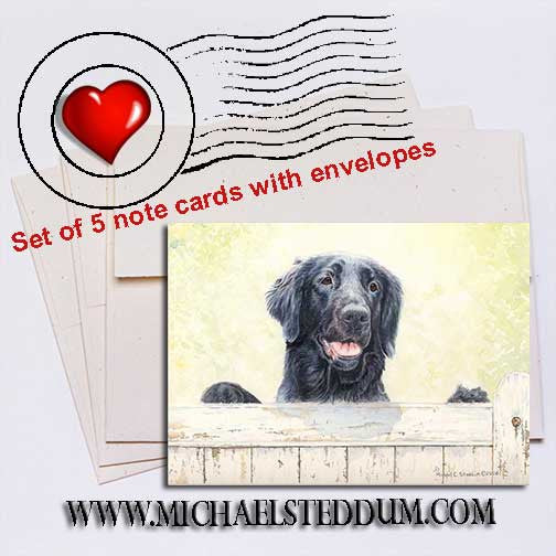 First Impressions, Flat Coated Retriever Note Card Set