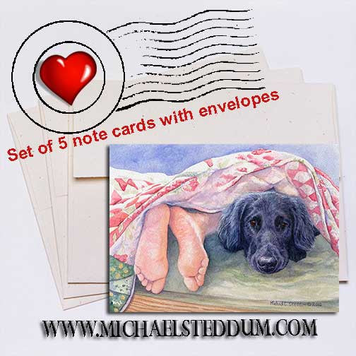 Flat Coat Feet, Flat Coated Retriever Note Card Set