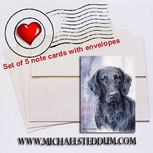 FCR Head Study II, Flat Coated Retriever Note Card Set