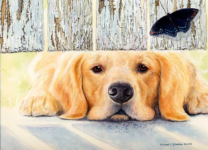 """Get It"" A Limited Edition Golden Retriever Print"