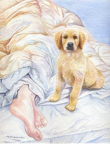 """Good Morning"" A Limited Edition Golden Retriever Print"