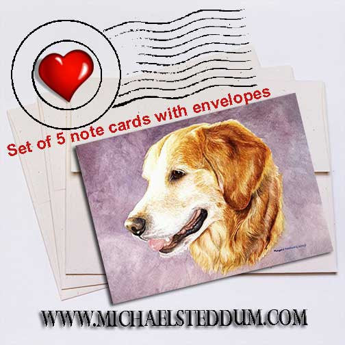 Golden Retriever Head Study Note Card Set