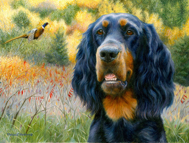 """Exhilaration"" A Limited Edition Gordon Setter Print"