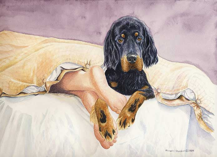 """Gordon Feet"" A Limited Edition Gordon Setter Print"