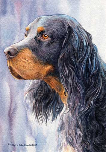 """Gordon Setter Head Study II"" A Limited Edition Print"