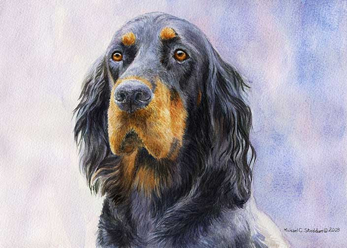 """Gordon Setter Head Study IV"" A Limited Edition Print"