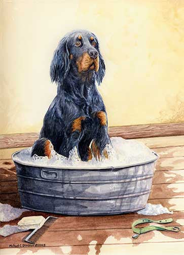"""Saturday Night"" A Limited Edition Gordon Setter Print"