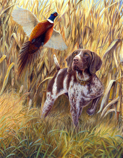 """Steady to Wing"" German Shorthaired Pointer Note Card Set"