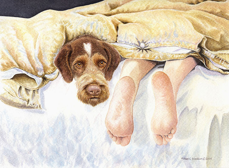 """GWP Feet"" A Limited Edition German Wirehaired Pointer Print"
