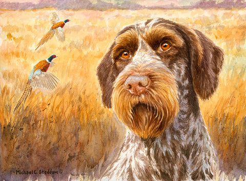 """October"" A Limited Edition German Wirehaired Pointer Print"