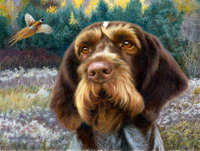 """GWP Oil"" A Limited Edition German Wirehaired Pointer Print"