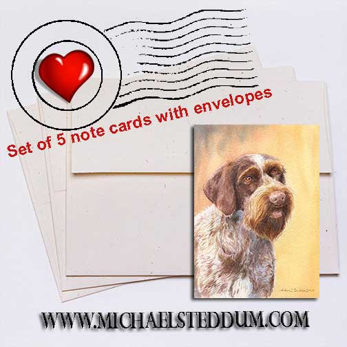 German Wirehaired Pointer Head Study II Note Card Set