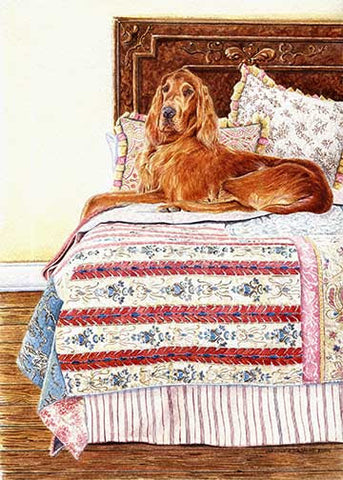 """Bed Warmer"" A Limited Edition Irish Setter Print"