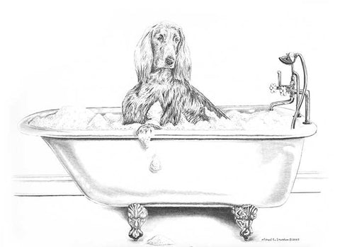 """Big Date"" A Limited Edition Irish Setter Print"
