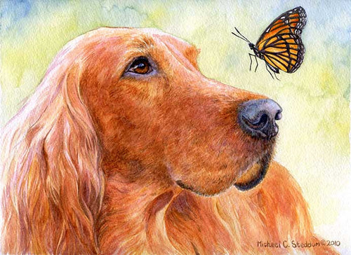 """Discovery"" A Limited Edition Irish Setter Print"