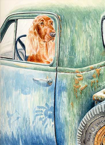 """Expectations"" A Limited Edition Irish Setter Print"