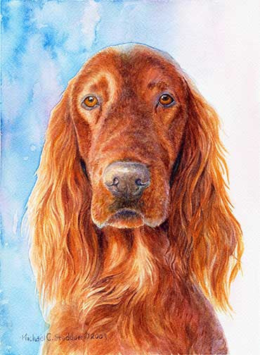 """Irish Setter Head Study IV"" A Limited Edition Print"