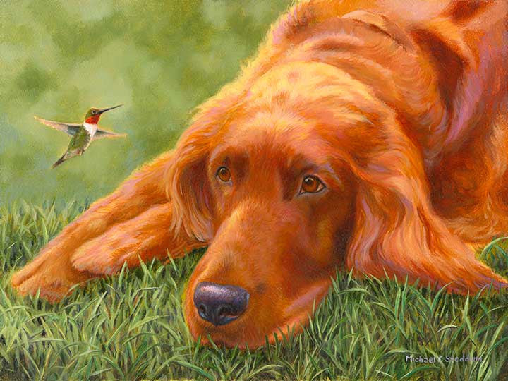 """My Turf"" A Limited Edition Irish Setter Print"