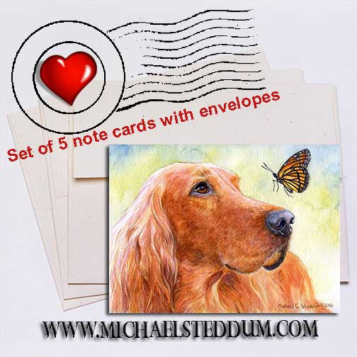 Discovery, Irish Setter Note Card Set
