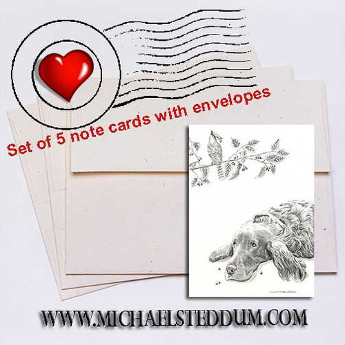 Bird Droppings, Irish Setter Note Card Set