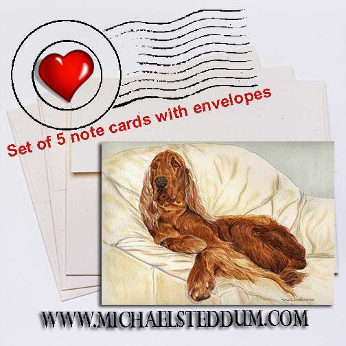 Comfortable, Irish Setter Note Card Set